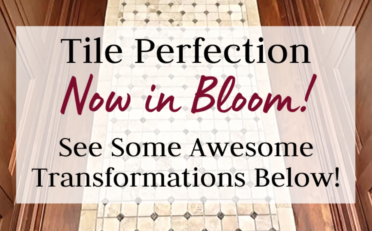 Read more about the article Tile Perfection Now In Bloom! 🌸